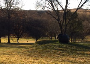 Joni Brenner's large bronze Skull catching the last of the afternoon sun with monkeys foraging in the background