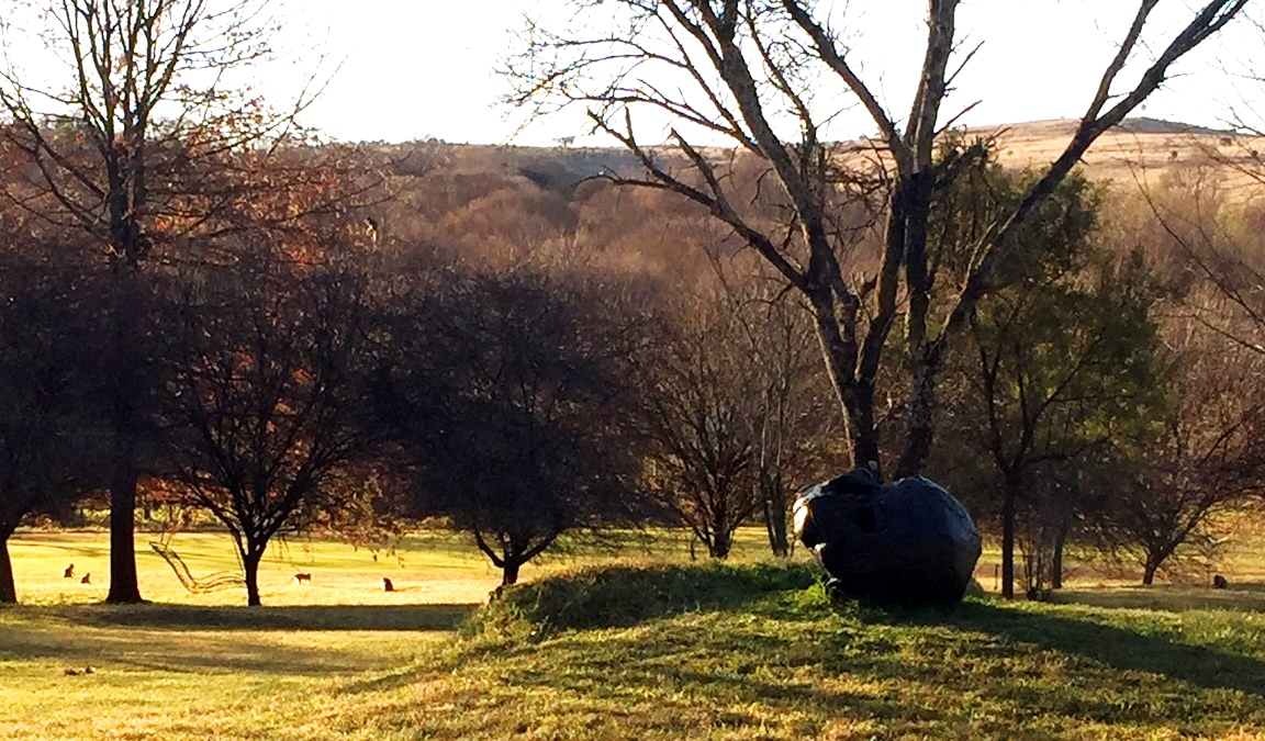 Joni Brenner's amazing large bronze Skull catching the last of the afternoon sun with monkeys foraging in the background