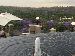 Fabulous views from the Deck at Four Seasons Westcliff