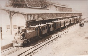 Park Station in the late 19th Century (Source: 'Johannesburg 100 Years' p 92)