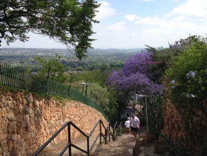 Westcliff stairs: a favourite training ground for Killi climbers