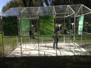 This installation was shown again at the Nirox 2015 Winter Sculpture fair
