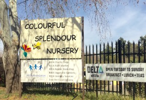 Colourful Splendour, REEA and Delta Cafe