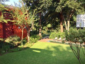 Peaceful garden setting at Ten Bompas Rd