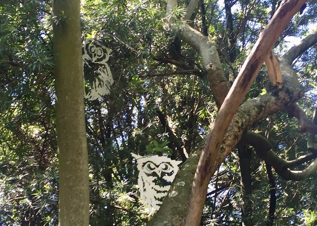 Owls Peeking Out